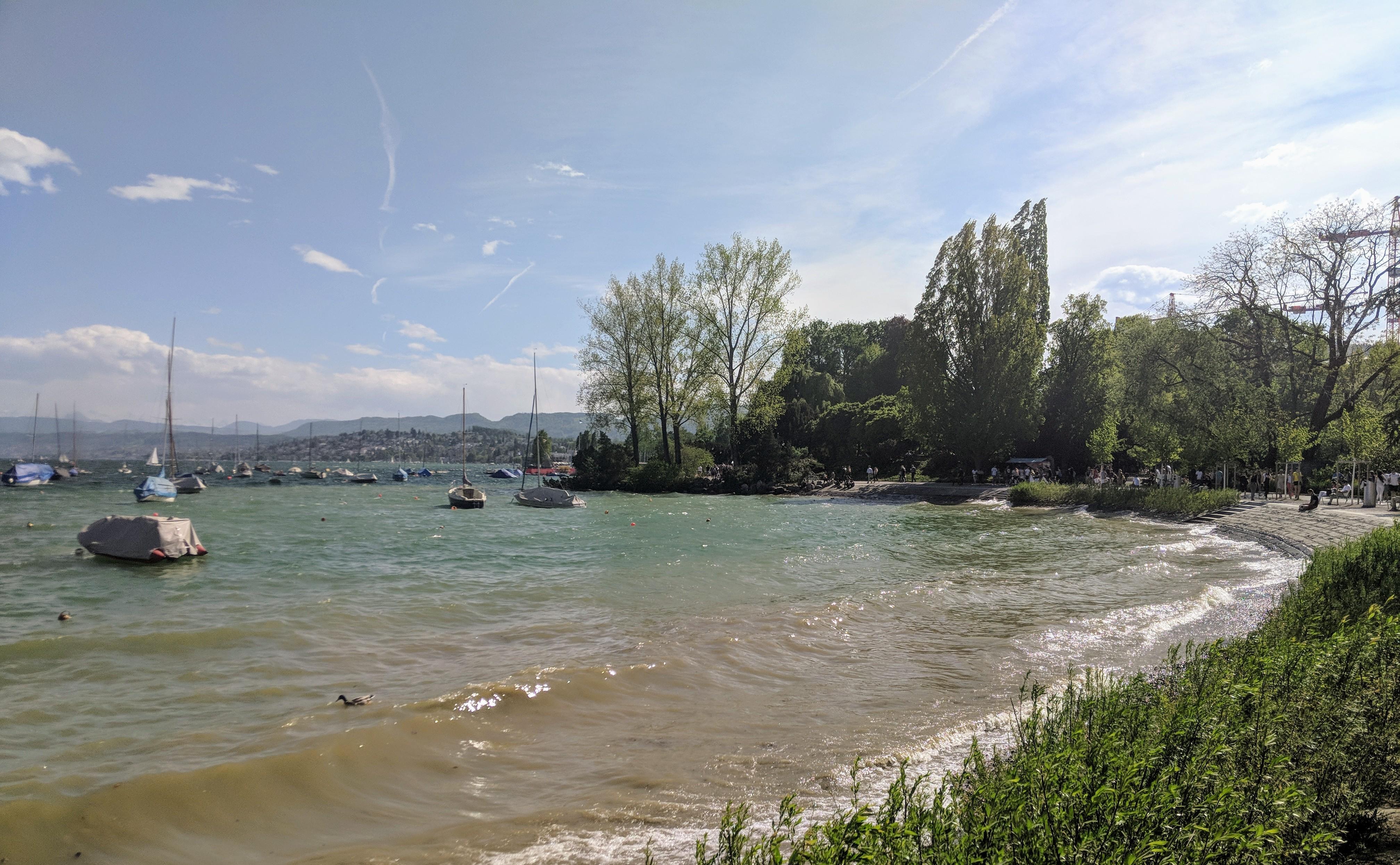 Running route in Zurich - Arboretum